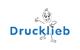 Logo: Sanitätshaus Drucklieb GmbH & Co. KG